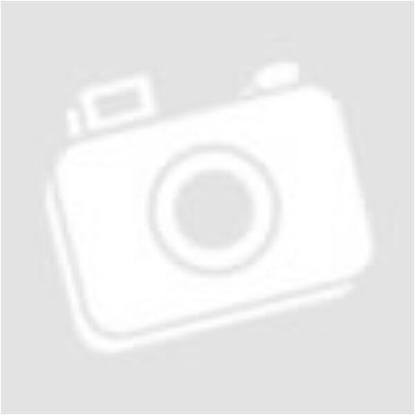 Zoncolan Pro 27,5 XTR 22sp